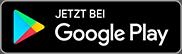 Icon Google Store